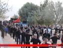 برگزاری مراسم عزاداری اربعین حسینی در سیریز+تصاویر