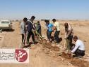 کاشت ۱۰۰۰ اصله نهال در آستان مقدس امامزاده جعفر(ع) سیریز